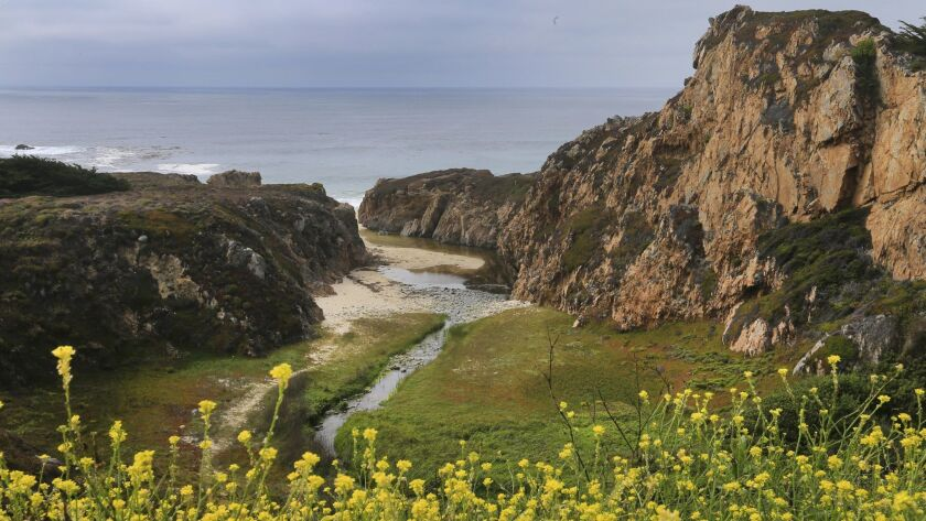 CARMEL-BY-THE-SEA, CA -- TUESDAY, AUGUST 2, 2016: A scenic view of Garrapata State Park in Carmel-B