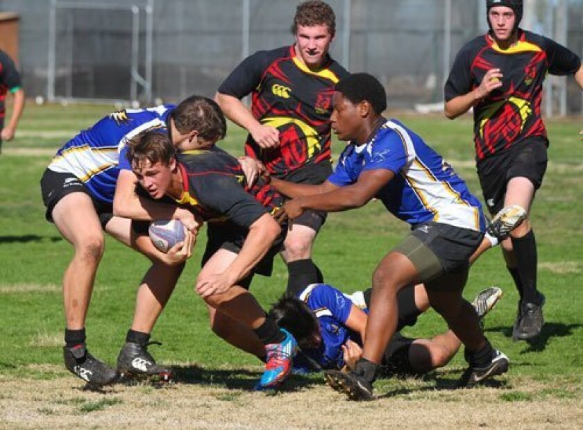 Torrey Pines rugby player Jacob Neeley fights for yards during Saturday's 38-5 victory over San Pasqual. Teammates Miles Ahles (center) and Jackson Backer (far right) come up in support. Photo/Susie Talman