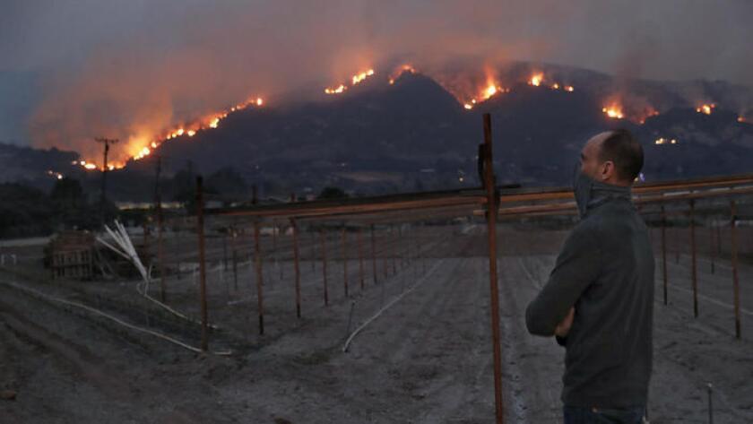 El residente de Carpinteria, Jay Molnar, de 55 años, con la boca y la nariz protegidas contra el humo, observa las llamas que brillan en las colinas de la ciudad. (Mel Melcon / Los Angeles Times)