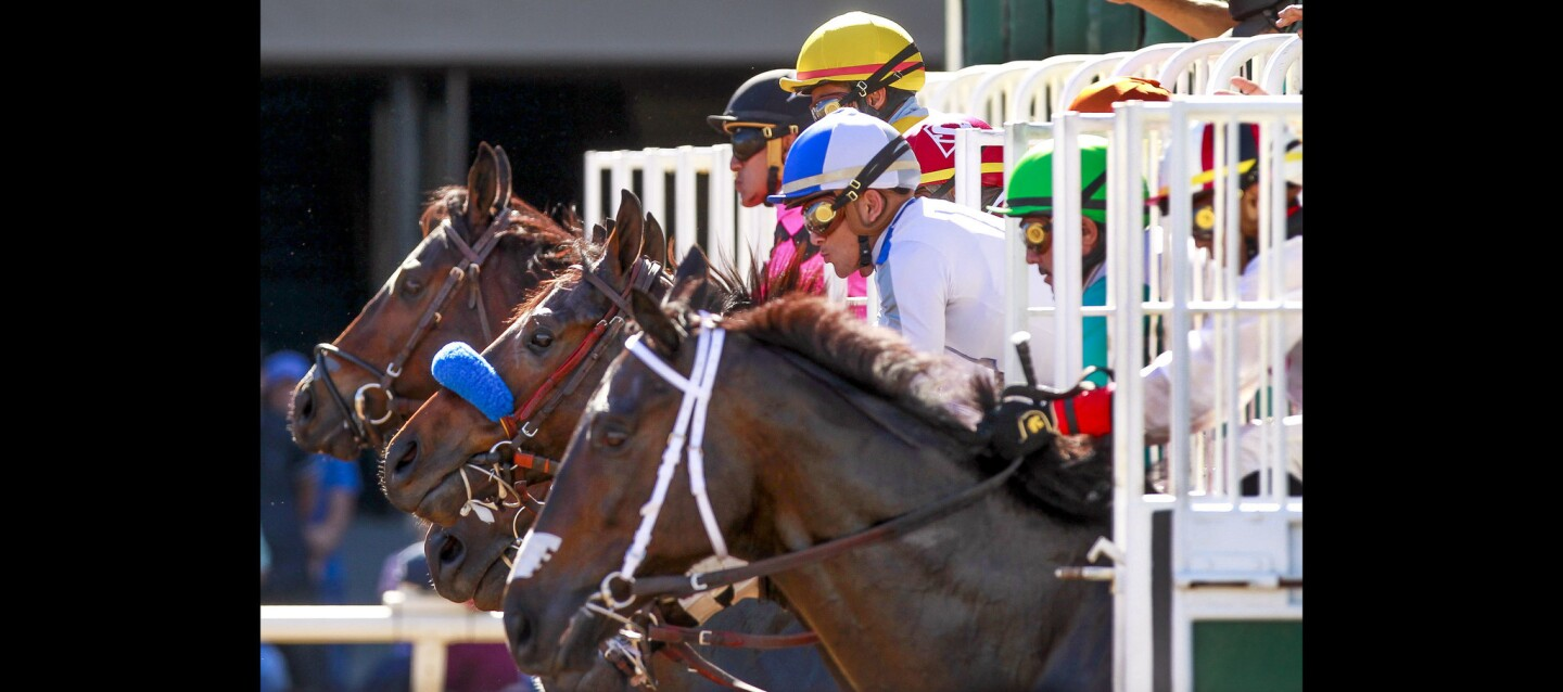 Opening day of Del Mar's fall meet