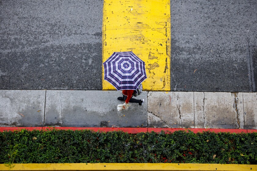 Umbrellas are out on the USC campus as a rain storm descends on Los Angeles on March 11.
