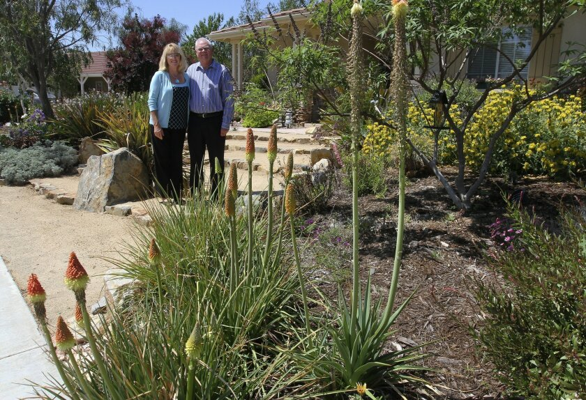 Patti and Earl Bonawitz stand in their yard in Murrieta that has been planted with drought-resistant shrubs and plants.