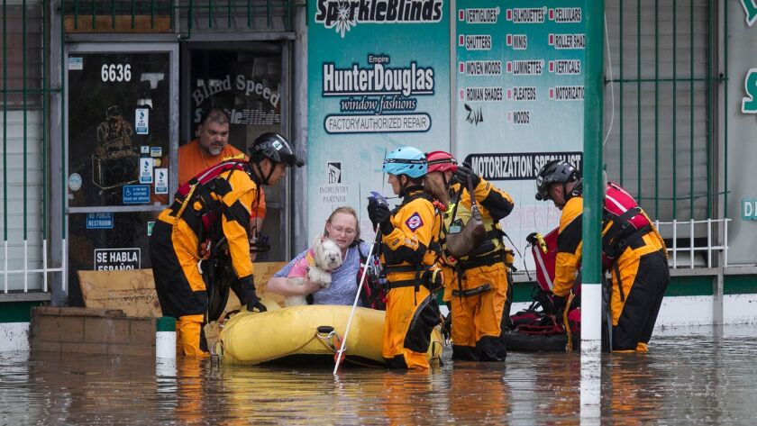 Firefighters and lifeguards rescue a woman and her dog on University Avenue just east of Aragon Street.