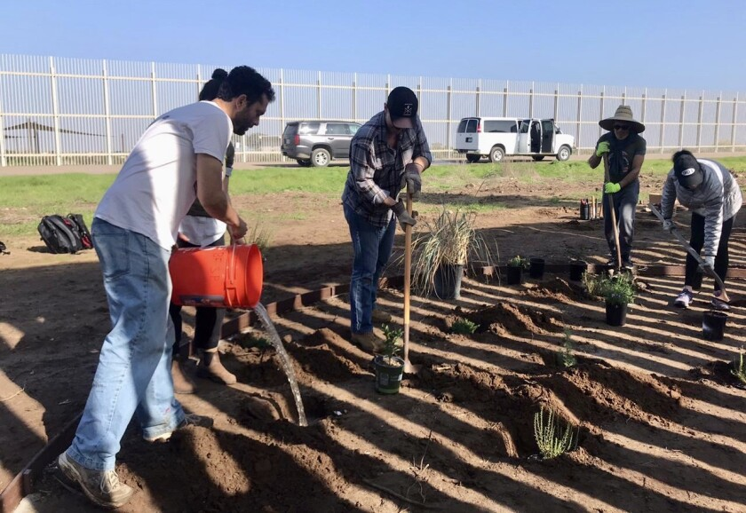 Daniel Watman (left) with a group of volunteers replanting the U.S. side of the binational garden on Saturday at the Tijuana-San Diego border.