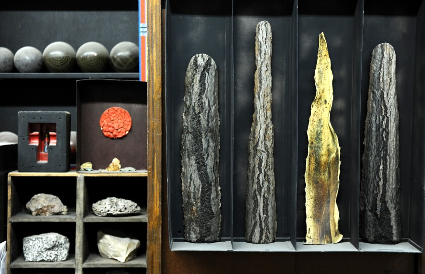 Curious objects like pieces of desiccated cacti and rocks inhabit a shelf in a studio