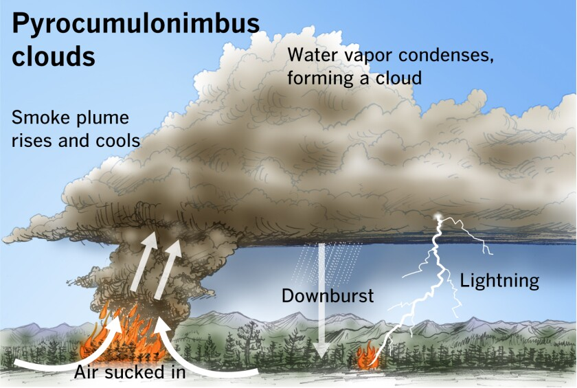 California fire analysis: What are pyrocumulus clouds? - Los Angeles Times