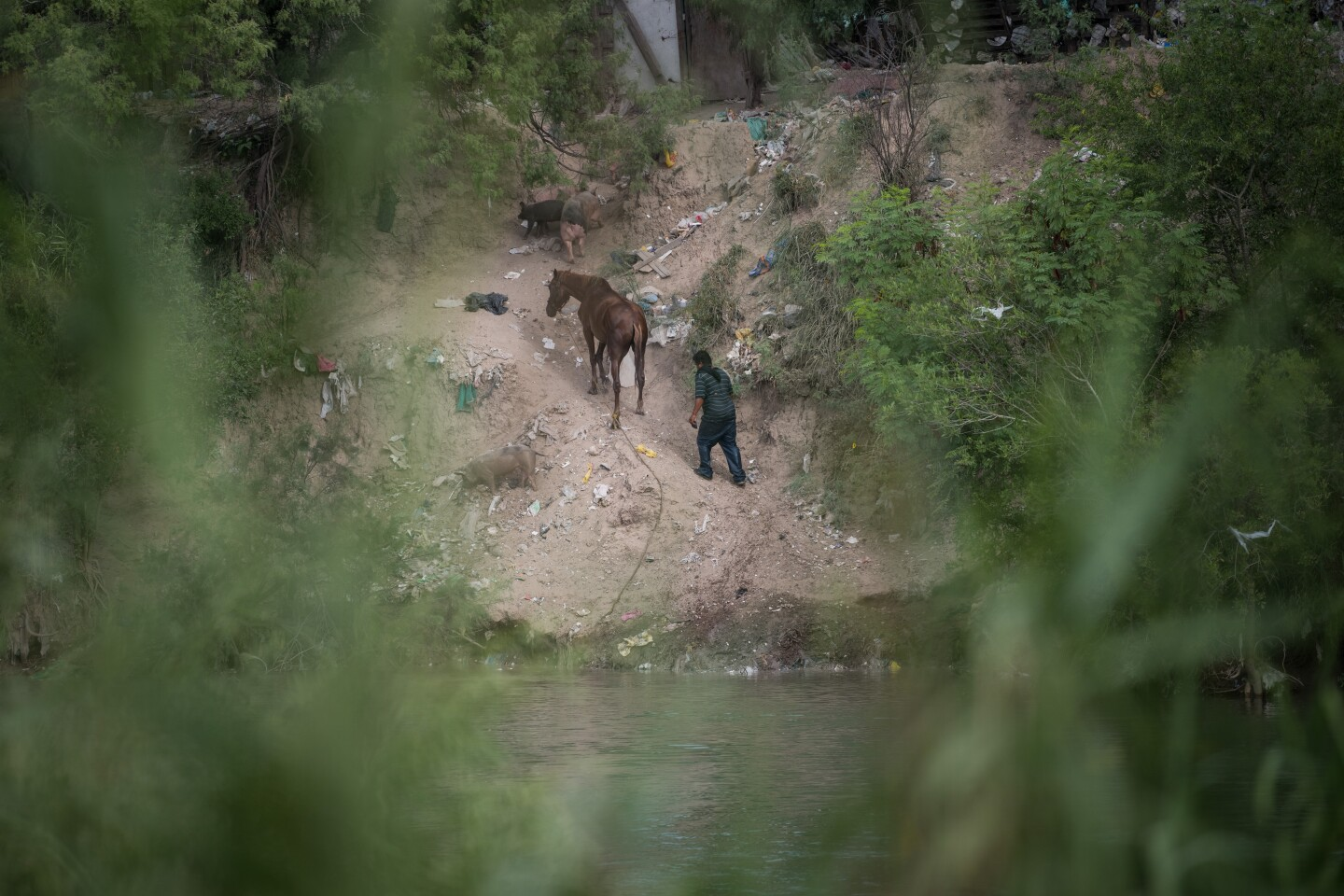 A man and horse walk up a bank of the Rio Grande after getting out of the water on the Mexican side of the river at a spot frequently used as a migrant crossing Tuesday, July 23, 2019, as seen from the U.S. side near Mission, Texas.