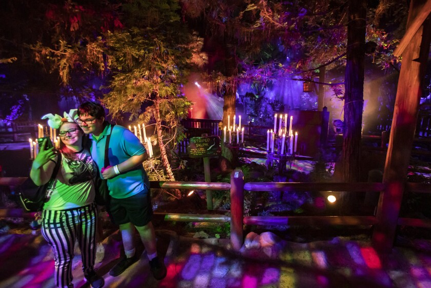 Villains Grove is a walk-through light, sound and fog experience on the Redwood Creek Challenge Trail in the Halloween-themed Oogie Boogie Bash ticketed event at Disney California Adventure park.