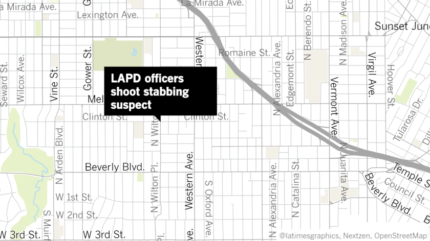 Los Angeles police officers shot and wounded a woman after they allegedly found her stabbing another person to death.