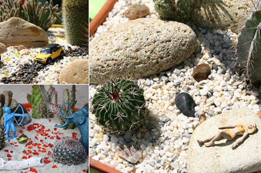 As an alternative to the usual container gardens, Anna Goeser creates amusing desert dioramas spiked with miniature cactuses, succulents, rocks, glass and vintage toys.