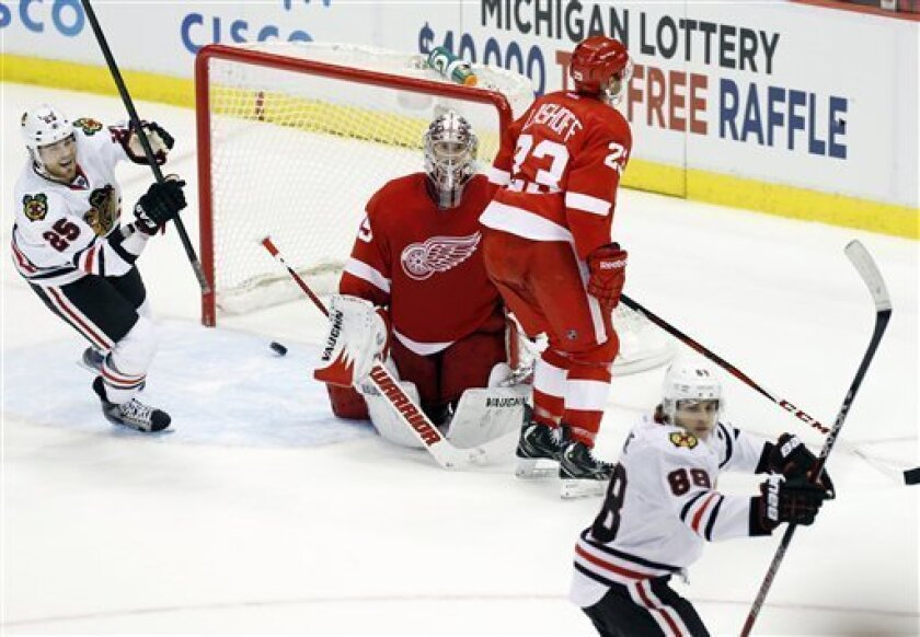 Chicago Blackhawks right wing Viktor Stalberg (25), of Sweden, celebrates a goal by Blackhawks right wing Patrick Kane (88) against Detroit Red Wings goalie Jimmy Howard, center, and defenseman Brian Lashoff (23) that tied the NHL hockey game in the third period on Sunday, March 3, 2013, in Detroit. Kane was the only player to score a goal during a shootout to defeat the Red Wings 2-1. (AP Photo/Duane Burleson)