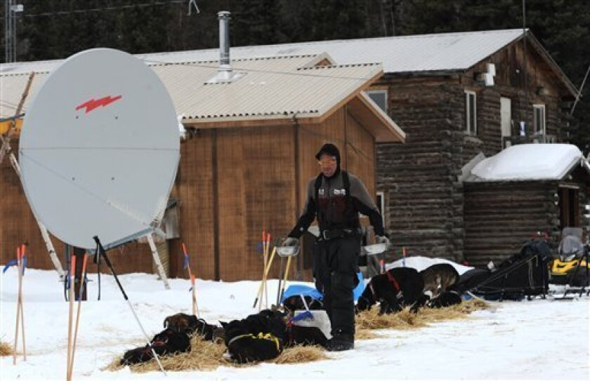 Iditarod musher Ken Anderson feeds his sled dogs in  Anvik, Alaska on Friday, March 8, 2013,  during the Iditarod Trail Sled Dog Race. (AP Photo/Anchorage Daily News, Bill Roth)