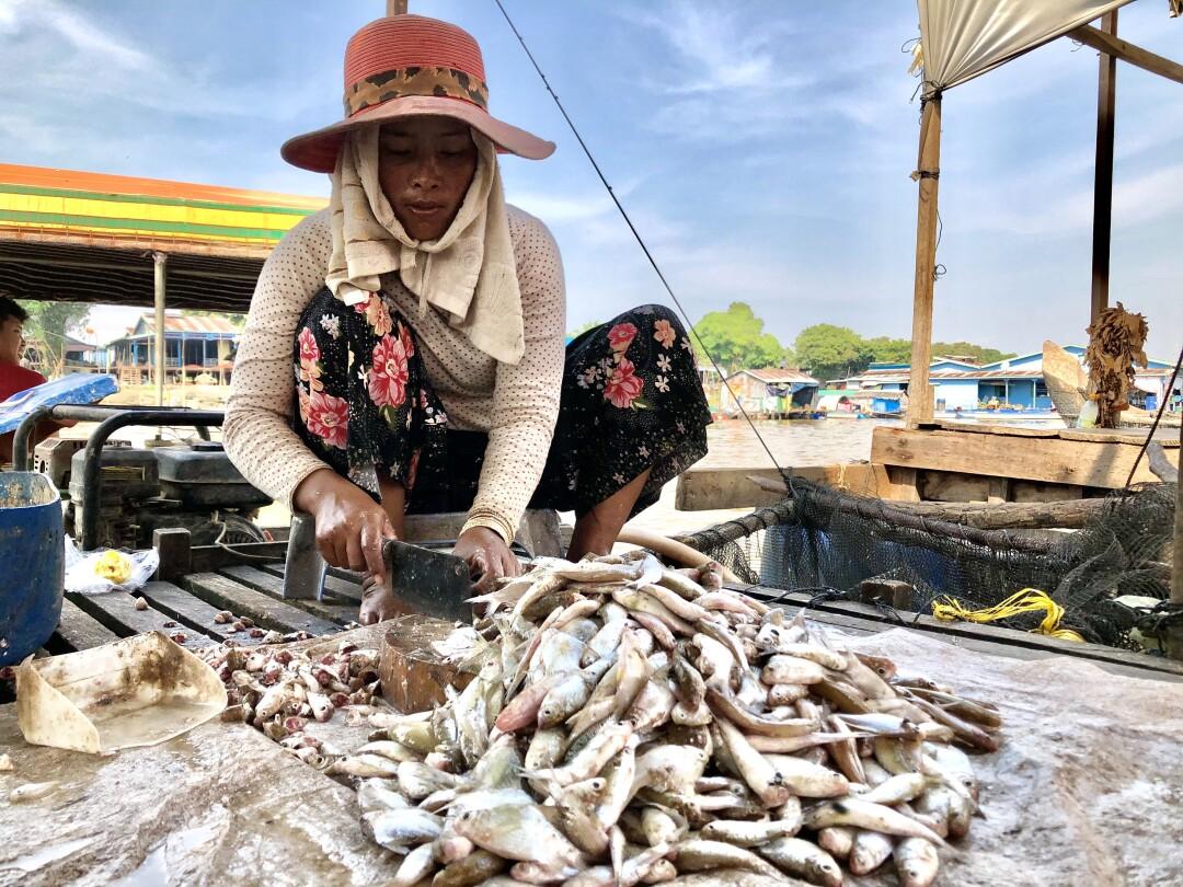 Fisherwoman in Phat Sanday Cambodia