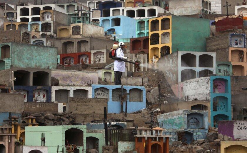 En esta imagen un trabajador sanitario fumiga para exterminar al mosquito que contagia los virus del dengue, el chikungunya y el zika en un cementerio a las afueras de Lima, Perú. El mosquito aedes aegypti, que se sabe contagia el virus del zika, vive y se reproduce en los jardines y casas de la gente, lo que complica la fumigación y a menudo requiere trabajosas intervenciones puerta a puerta. (AP Foto/Martin Mejia)