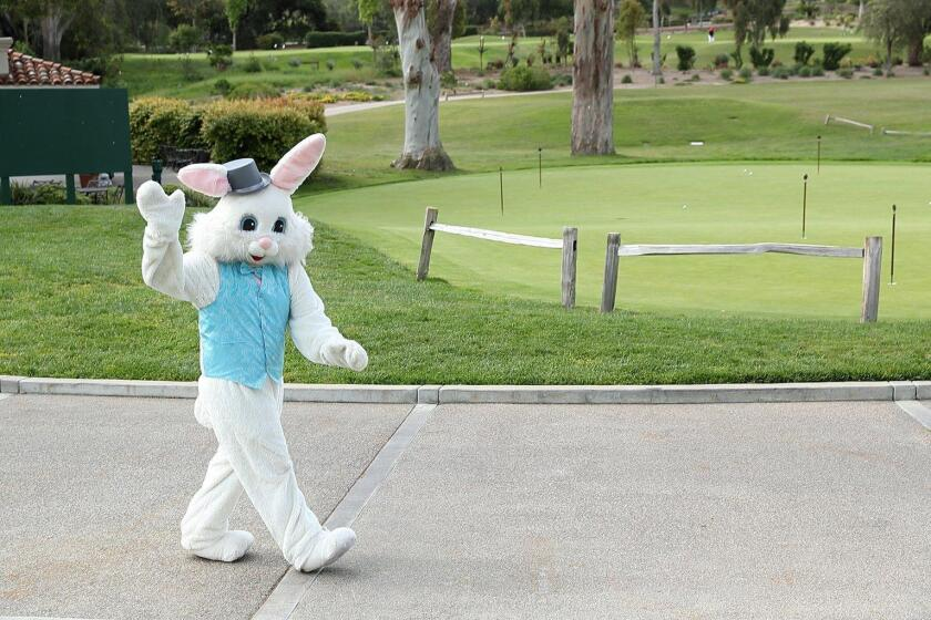 The Easter Bunny arrives at the RSF Golf Club
