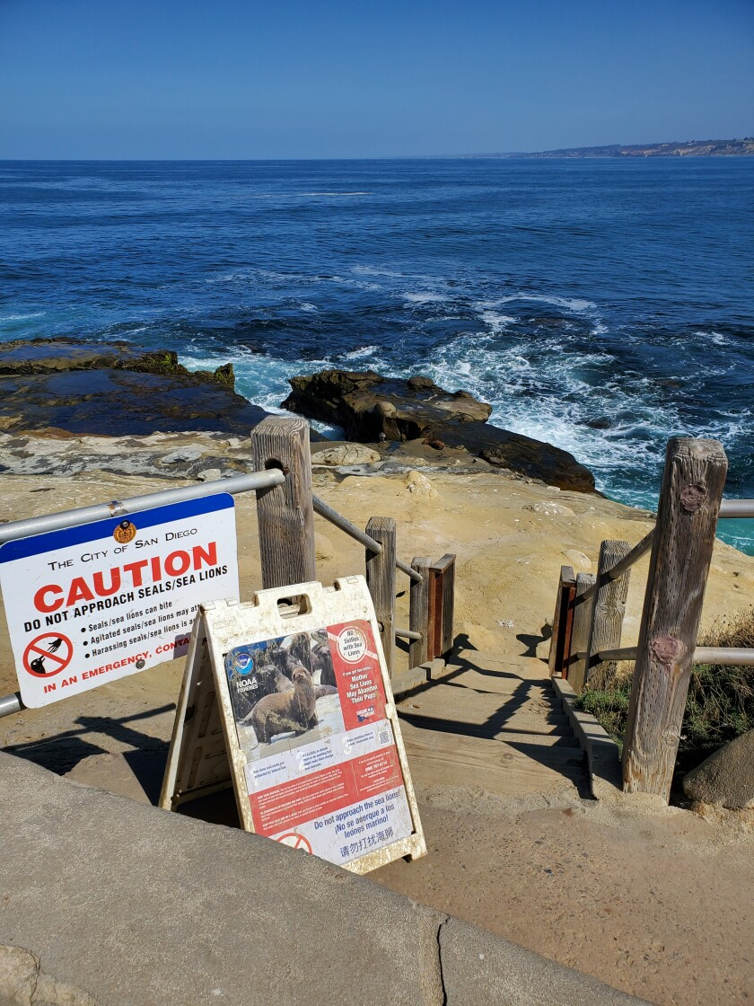 The stairway leading to the bluffs at Point La Jolla was open as of Sept. 16.