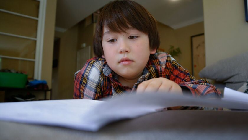 Carmel Valley second-grader Noah Orion, 7, looks over journals that he kept to track his good and bad days after losing his mother, Sandy Orion, to cancer last fall.