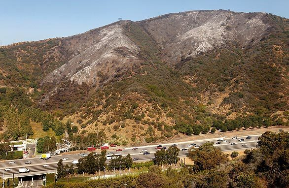 Hilltops charred by fire overlook the 405 Freeway in the Sepulveda Pass near the Getty Center. The fire, which started Wednesday afternoon, burned 80 acres and forced evacuations from the Getty and Mount St. Mary's College. It was 90% contained by Thursday morning, though Getty Center Drive remained closed.