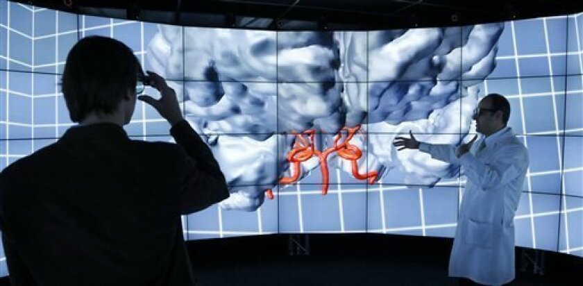 In this photo made Thursday, Jan. 24, 2013, in Chicago, Andreas Linninger, University of Illinois-Chicago professor of bioengineering, chemical engineering and computer science, left, adjusts his 3D glasses as brain surgeon Ali Alaraj talks about  viewing the brain inside CAVE2. CAVE2 is a system o