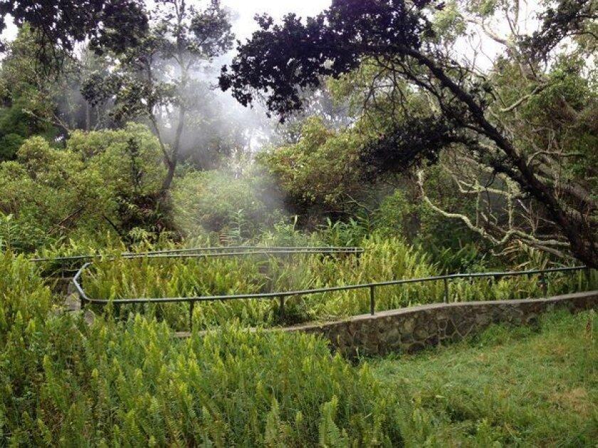 Hawaii: Teen survives fall into crevice at Volcanoes National Park