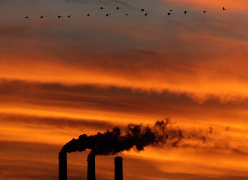 A flock of geese flies past the smokestacks at the Jeffrey Energy Center coal power plant near Emmett, Kan.