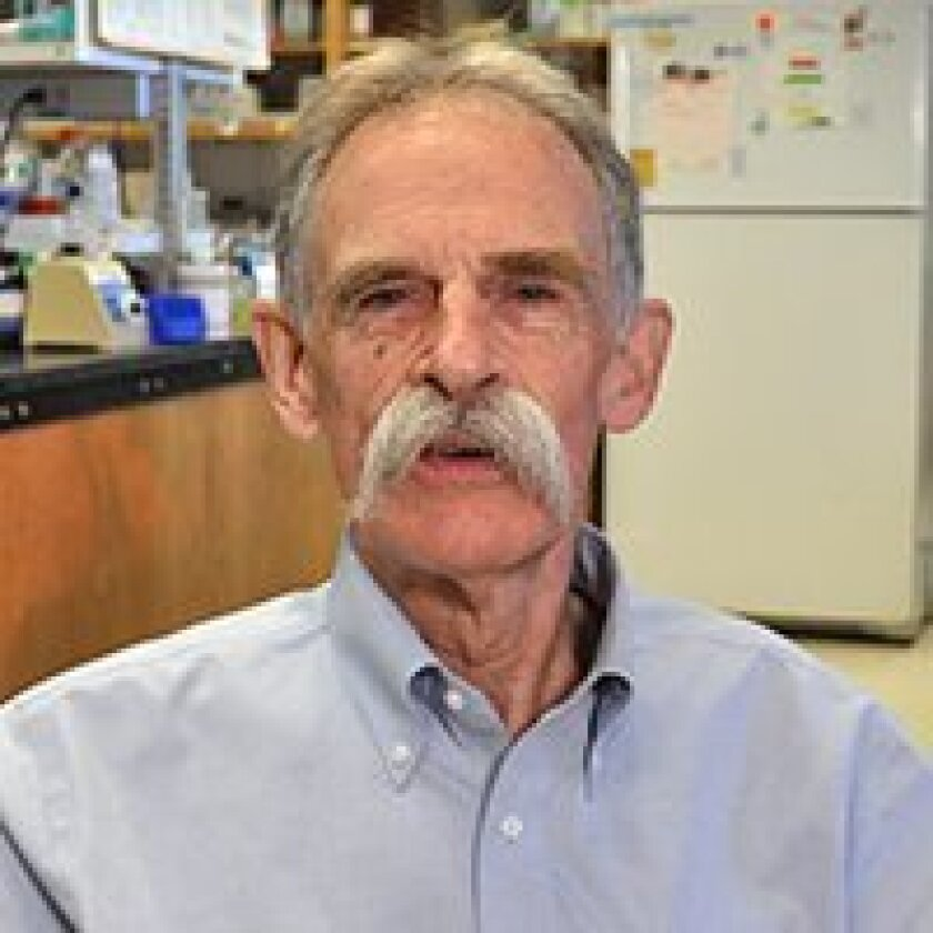 Neurobiologist Nick Spitzer