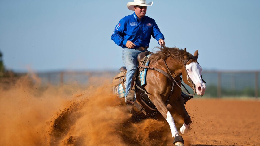 Professional reiner Casey Deary puts his horse, America's Supermodel, through its winning paces