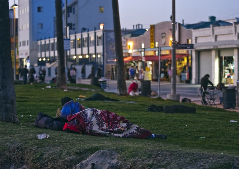 A man rests on the grassy area along Ocean Front Walk at sunset.