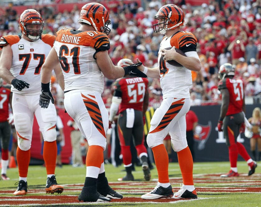 Cincinnati Bengals quarterback Andy Dalton (14) celebrates with teammates Andrew Whitworth (77) and Russell Bodine (61) after a 5-yard touchdown run against the Tampa Bay Buccaneers during the second quarter of an NFL football game Sunday, Nov. 30, 2014, in Tampa, Fla. (AP Photo/Brian Blanco)