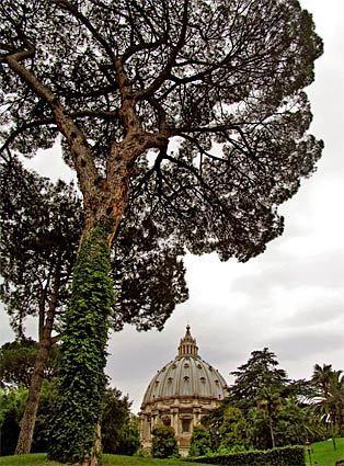 Vatican City   St. Peter's