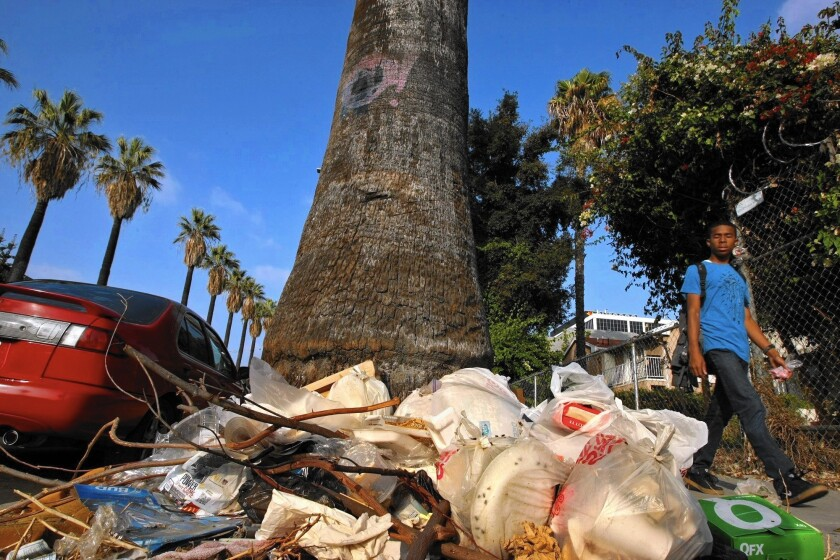 Trash sits on Beacon Avenue in the Pico-Union district. City Administrative Officer Miguel Santana recommended an overhaul of the city's tactics to control illegal dumping.