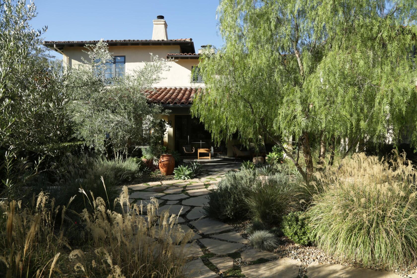 A Boring Lawn Is Now A Lush Mediterranean Garden That Provides