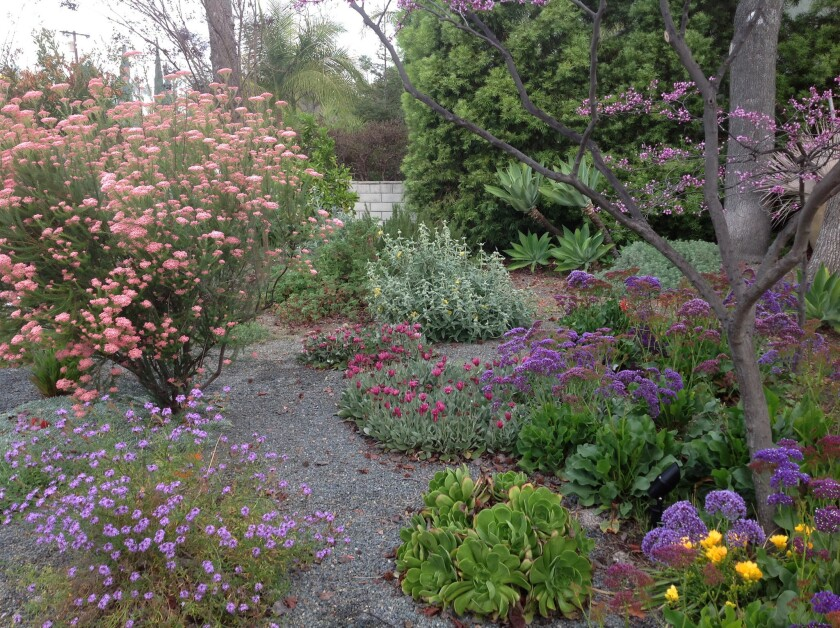 The Garden of Serenity in San Gabriel will be on the Garden Conservancy's Open Days tour on April 26.