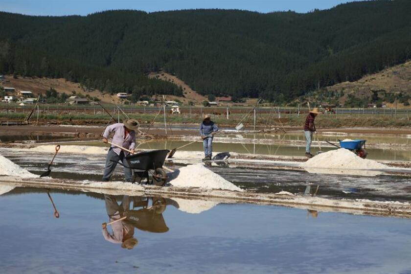 Local salt-makers in Cahuil, a coastal town in central Chile, work on salt pools on Jan. 11, 2019, where they also teach tourists in a few hours their 500-year-old trade - salt-making. EFE-EPA/Innova Difusion