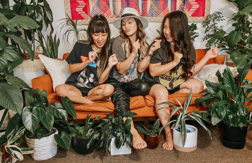 Three casually dressed women sitting on an orange sofa surrounded by houseplants.