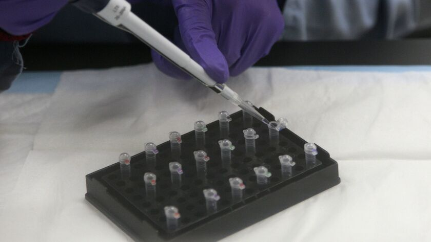 A criminalist works on mitochondrial DNA testing at the state's Department of Justice in Richmond, Calif.
