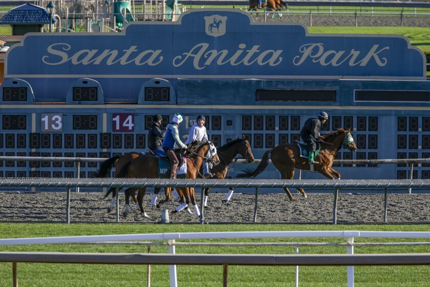 Another horse dies at Santa Anita; 31 thoroughbreds have died at track since Dec. 26