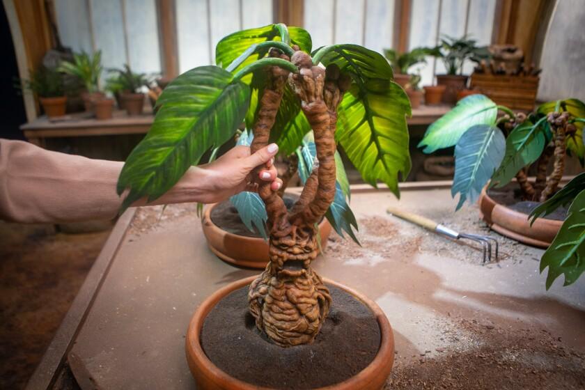 A hand grasps a facsimile of a magical mandrake plant