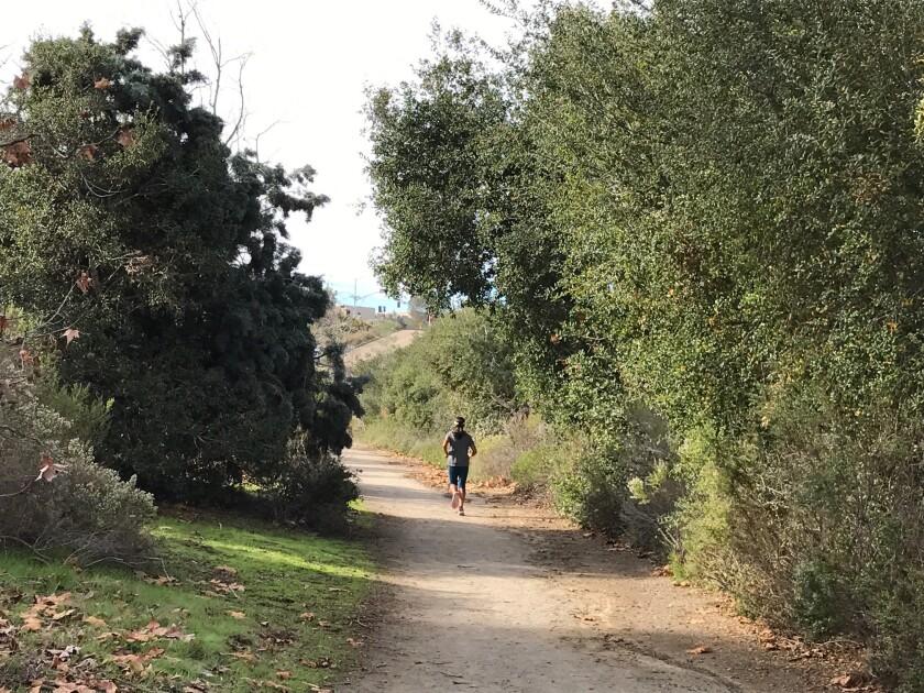 A runner on the popular CVREP trail in Carmel Valley.