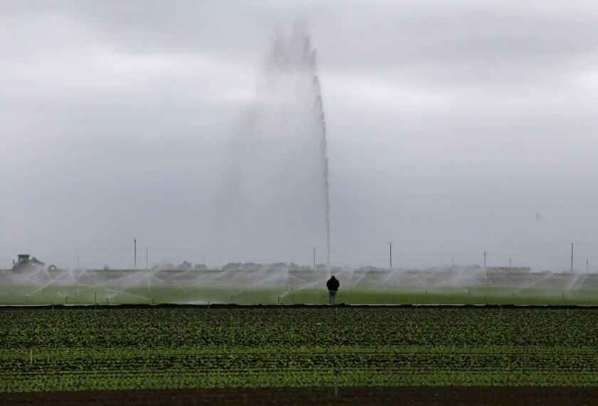 Sprinklers water a field outside Salinas. A proposed ballot measure would use bond money earmarked for California's high speed rail project and use it for new water projects.