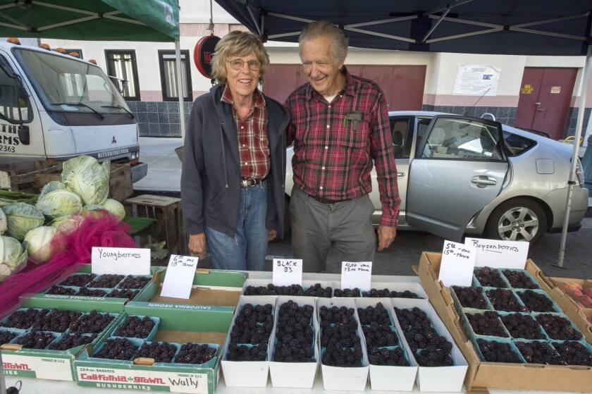 Robert and Patricia Poole grow boysenberries, Youngberries and blackberries in Redlands.