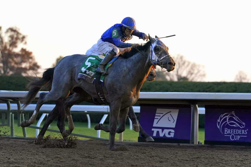 Jockey Luis Saez rides Essential Quality to victory in the Breeders' Cup Juvenile at Keeneland Race Course.