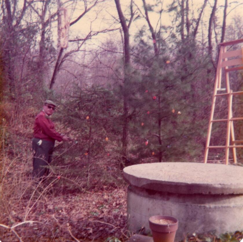 My father in the 'bosky dell,' December 1974