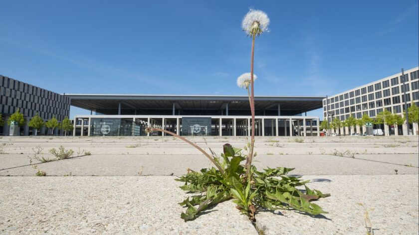 View of weeds growing at new unopened Berlin Brandenburg Airport Willi-Brandt