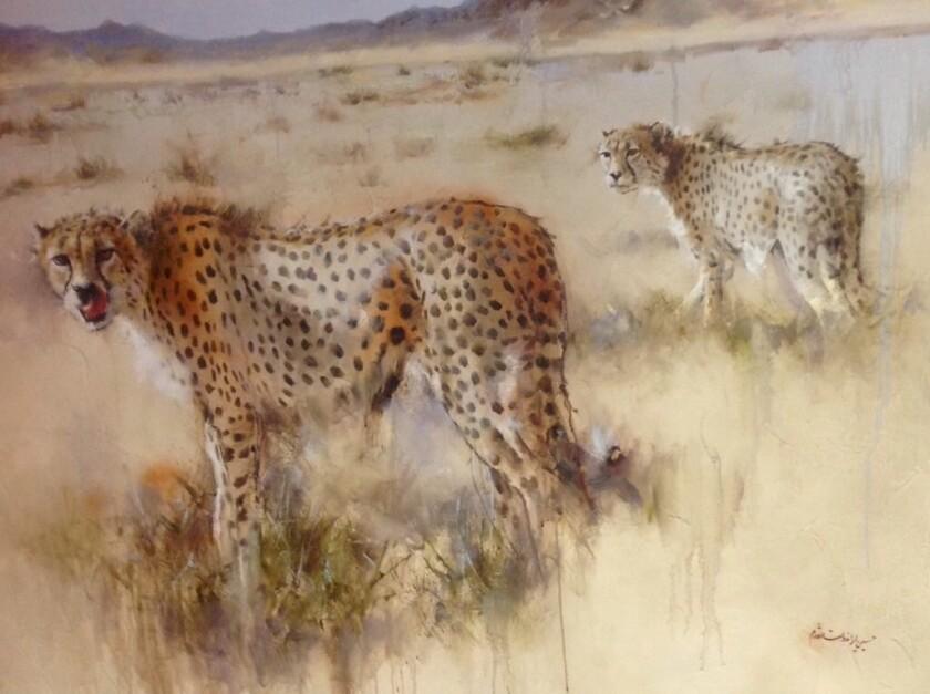 Iran cheetah
