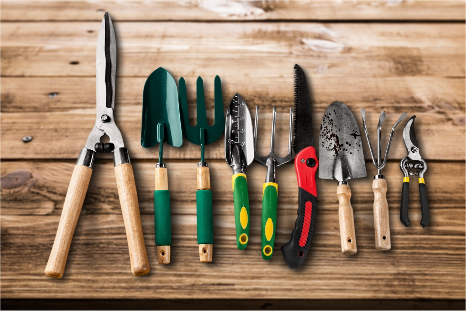 Get Garden Tools In Shape For New Year The San Diego Union Tribune