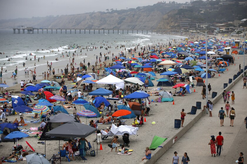 Thousands of beach-goers lined the San Diego coast at La Jolla Shores earlier this month.