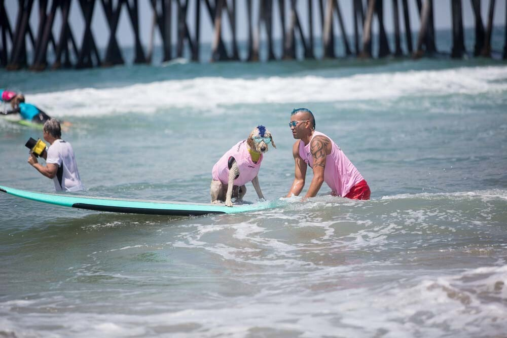 With a little assistance from their humans, dogs showed off their surf skills at the Imperial Beach Surf Dog Competition on Saturday, July 28, 2018.