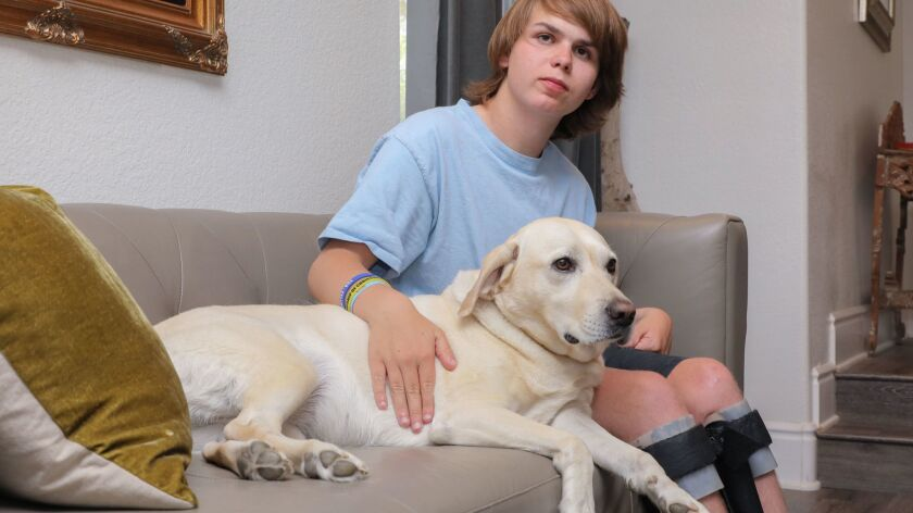 Ian McFarland sits with his therapy dog Nutella.