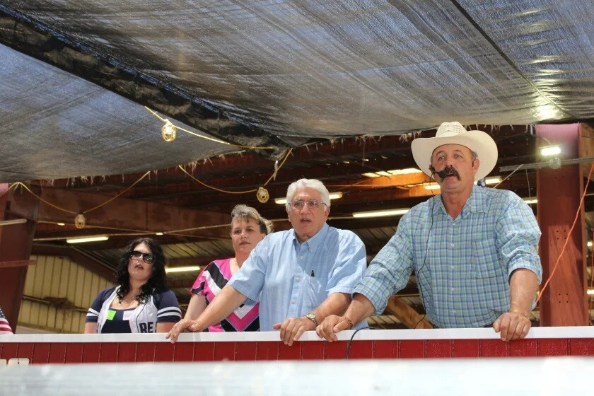 Auctioneer Matt Gorham, far right, has been a fixture at the Ramona Jr. Fair Livestock Auction for years.